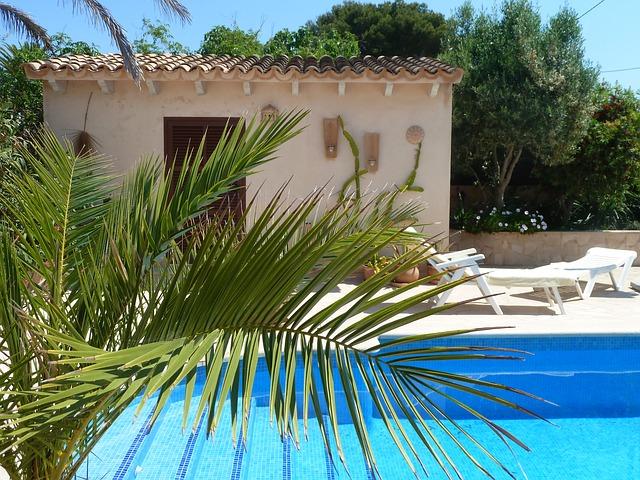 palma u bazénu